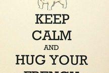 French Bulldogs ^^