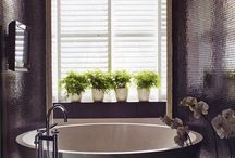 DESIGN :: Bathrooms / by Gina Fiorito