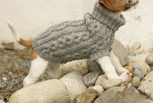Knits for dogs