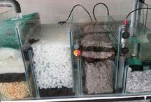 filtry i akwaria