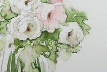 Roses blanches aqua