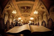 Lietuvos bibliotekos * Libraries in Lithuania