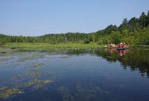 10-Seen-Rundfahrt / Die beschriebenen 10 Seen sind teils durch die Havel, teils durch alte Flößer- und Frachtkanäle miteinander verbunden. Wir können diese  33 Kilometer lange Kanutour auf der Mecklenburgischen Seenplatte beliebig erweitern, da sehr viele weitere Gewässer an diese schöne Rundtour angeschlossen sind.