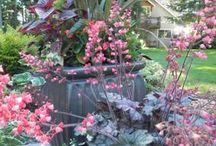 Container gardens / by Sublime Garden Design