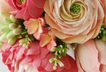 Flowers and Other Plants. / by judi knight