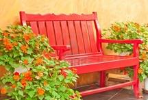 rojo / red / jardines y terrazas en los que predomina el color rojo