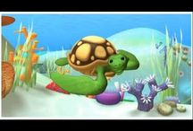 Projecte tortugues