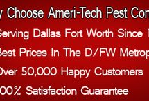 Dallas Pest Control / Ameritech Pest Control 214-504-2875 Visit: http://ameritechpest.com/ Pest Control Dallas TX Termite Treatments: We have over 50,000 happy customers since 1982.