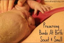 Pregnancy and Birth / by Attachment Parenting International