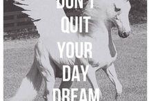 Unicorns. Yes!