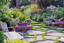Garden ideas xoxo