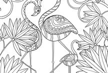 antistress adult coloring
