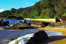 Madagascar / Travel in nature of Madagascar #travel #madagscar #nature #tropical #africa