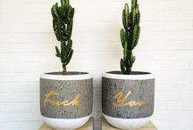 Pots // / #pots #pot #plant #planters