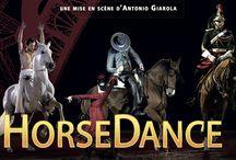 """Nuit du Cheval / Nous serons à La Nuit du Cheval ce samedi pour le spectacle """"Horse Dance"""" Réalisation : Patrick Savey / by Zycopolis Prod"""