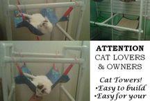 Kočičííí / kočičí vychytávky