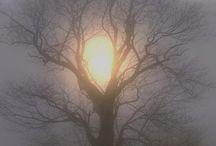 Natur Bilder / Vackra solnedgångar / uppgångar.