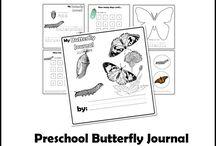 Butterfly/Caterpillar Study