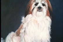 Furry friends / by Debbie Dixon