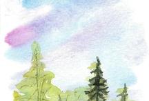 Paint/ draw