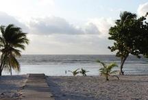 Vacation spots/travel tips / by Maribel Aguilar