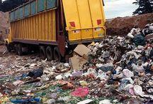 Management of food waste