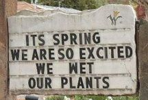Funny Signs/Quotes
