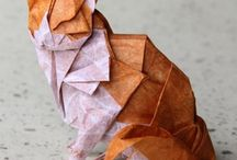 Paper / by Arinda Vrolings