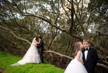 WatervieW  Weddings / WatervieW in Bicentennial Park....come to where the magic lives