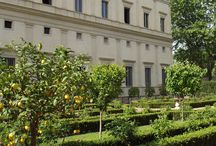 Our Italian botanical gardens and Roman Villas where we take inspiration from. / Coming inside this wonderful piece of Italian history http://erbeitalianskincare.blogspot.it/2014/05/visiting-another-italian-botanical.html