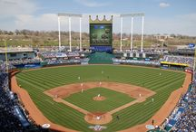 baseball stadiums / by Kelly Rodgers-Taggart