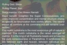 Rudraksha / A brief view of different types of Rudraksha..