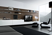 Contemporary living room wall systems / Ideas and trends