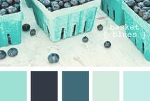 paleta de cores cazinha