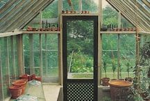 Potting shed/greenhouse