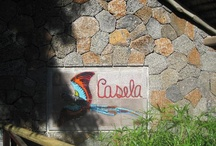 """Casela World of Adventures / Casela World of Adventures is a wonderful park found in Mauritius and is one of the locations in """"Stuck with Me""""."""