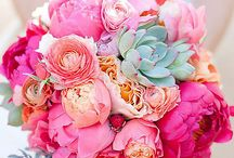 Wedding Bouquet / Wedding Bouquets