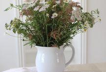 Buketter / Jeg elsker blomsterbuketter. Både at få dem og at lave dem. Buketter af vilde blomster, af havens blomster af købeblomster. Jeg elsker dem alle. Her viser jeg nogle af mine buketter.