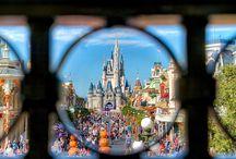 {disney} Walt Disney World / Walt Disney World in Florida   The Magic Kingdom, Epcot, Hollywood Studios, and Animal Kingdom. / by Sereina