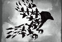Crows & Ravens... for no other reason than I love them