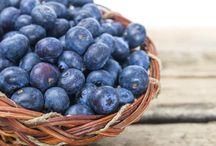 foods to heal pancreas