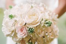 Wedding - Bouquets / by Denise Burridge