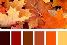 High Grove_Colour Palette
