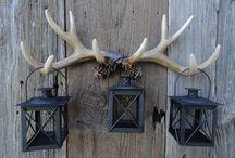 Deer antler ideas