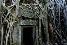 Ankor wat Cambodja