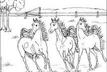 omalovanki kone