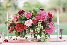 Wedding Color : Red / Wine / by Ashley Brand