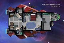 Starship project