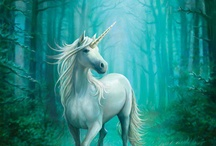 UNICORNS  MAGICAL CREATURES / IF ONLY / by SASSY SUSAN ROE