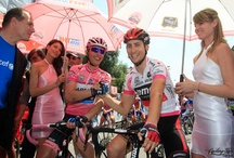 Giro Specific Frocks / by marcelleholt